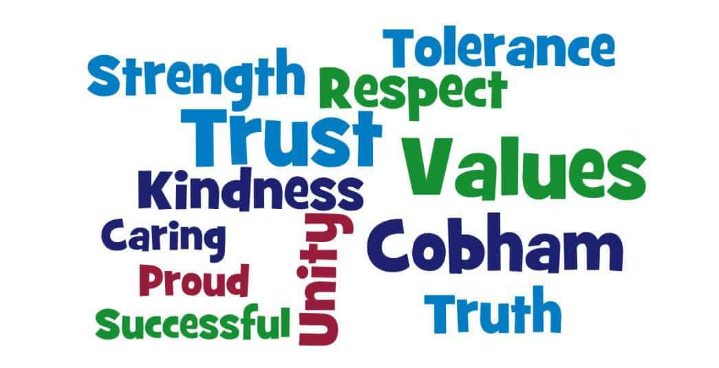 wordle cobham primary trust values